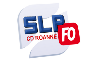 CD ROANNE mini ok